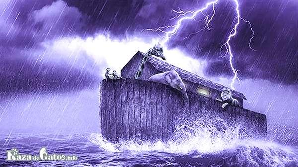 Imágen del arca de Noé. Leyendas del Origen de los Gatos
