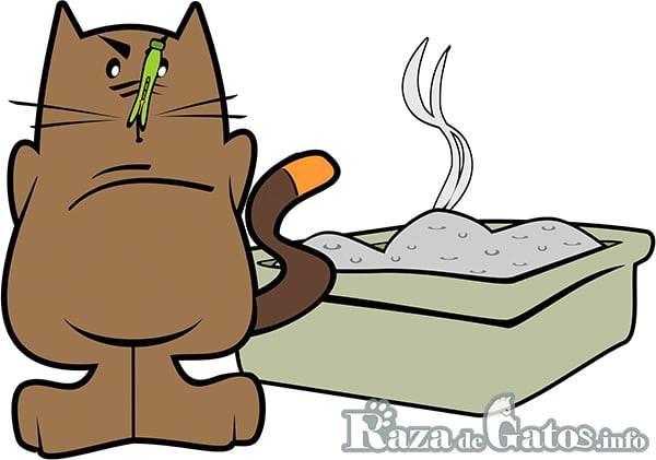 Representación de gato con broche en nariz por el mal olor de su arenero – Muy importante la limpieza e higiene del arenero de tu gato.