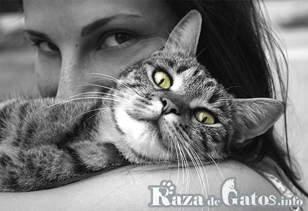 Mujer abrazando gato . Imágen destacada para los beneficios de tener un gato como mascota.