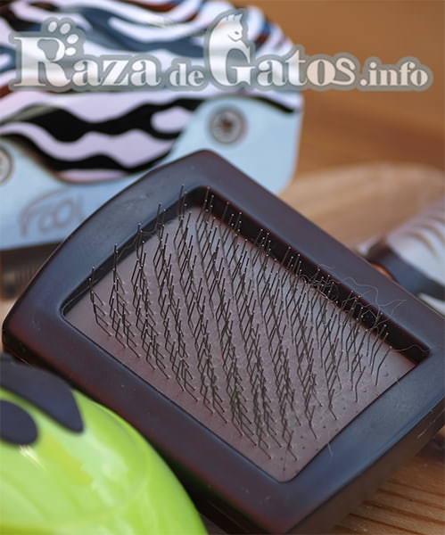 Cepillo de pelo para gatos. Imagen para el articulo de limpieza e higiene de tu gato.