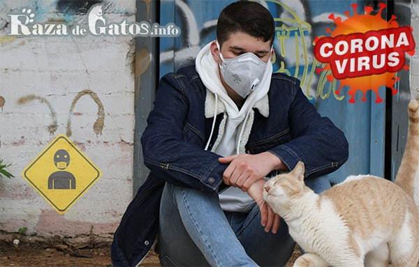 Un joven sentado en la vereda recibiendo cariño de gato en la pandemia del coronavirus - razadegatos.info