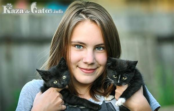 Foto de Niña sonriente con dos gatos cachorros en brazo. Los gatos más cariñosos del mundo.