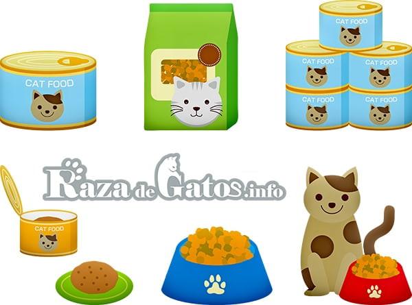 Fotografía sobre las Variedades de alimentos para gatos . La alimentación en los gatos.